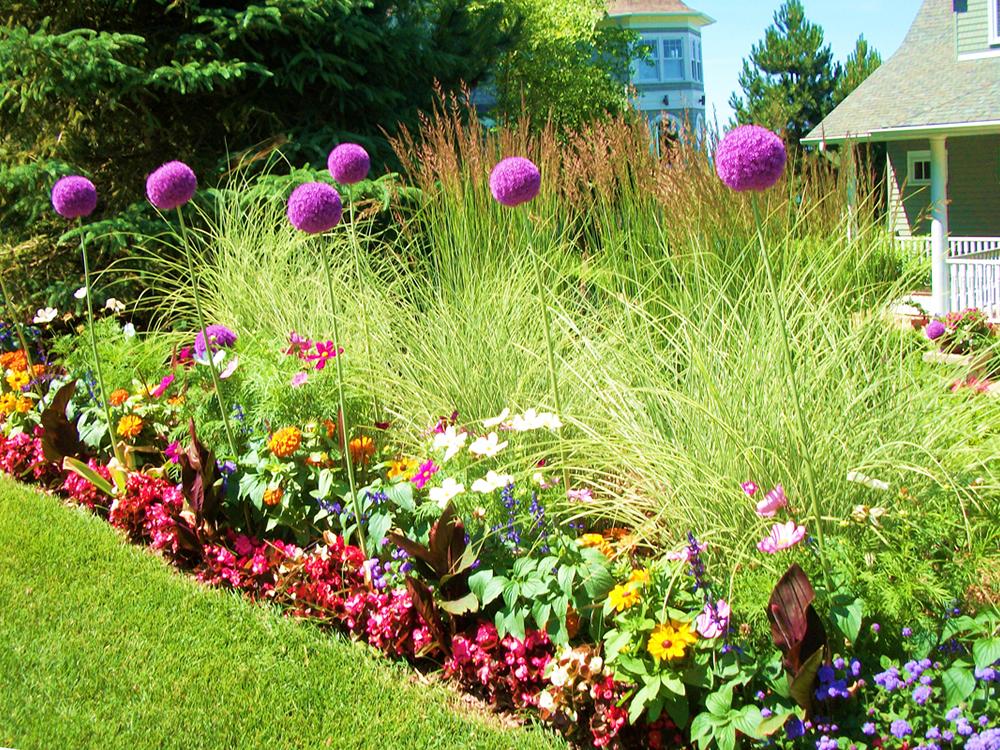 Sunny Garden